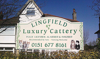 cattery wirral